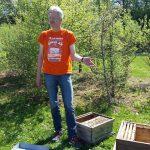 Referent Reinhold Burger zeigt Umsetzen eines Ablegervolkes