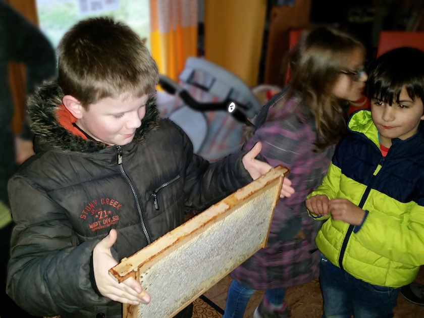 Probewiegen der Honigwabe
