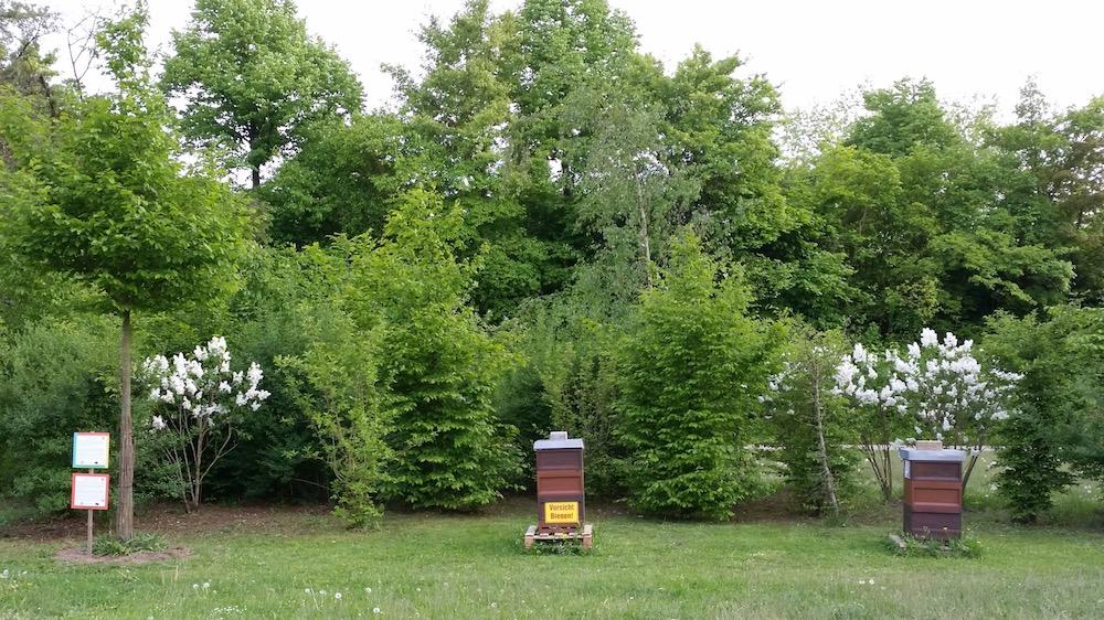 "Lehrbienenstand ""Bienenweg"" von Bienen-leben-in-Bamberg.de"