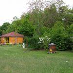 Bienen-InfoWabe mit Bienengarten und Lehrbienenstadt