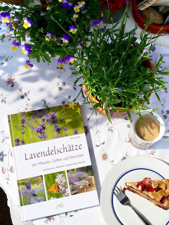 "Lesebereites Rezensionsexemplar ""Lavendelschätze"" Dr. Elke Puchtler, Pala-Verlag"