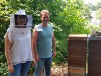 Sommers sind bereit für den Blick in die offene Bienenwohnung