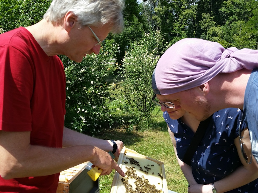 Erste Begegnung mit den Bienen
