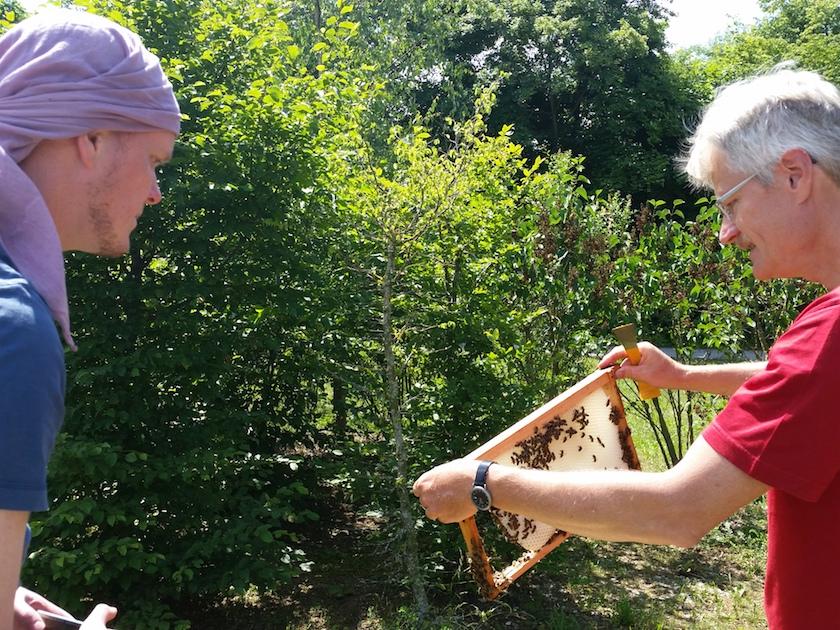 Bienenpate Stefan Schneider erlebt ersten Bienenbesuch