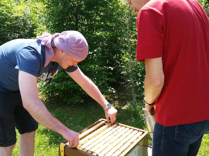 Rähmchenentnahme durch Bienenpate Stefan
