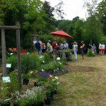 Besucher der Rosen- und Staudenmesse