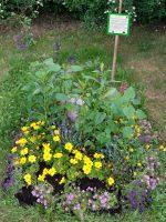 Schau-Grabanlage im Bamberger Bienengarte