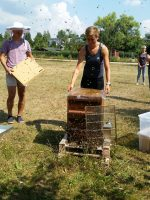 Modul 8: Honig ernten