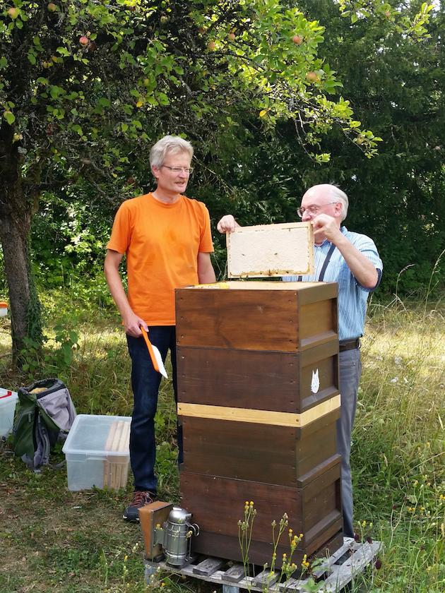 Prof. Dr. Ulrich Heber hebt eine Honigwabe aus der Beute.