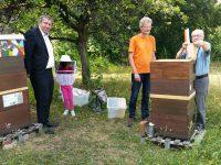 Prof. Dr. Ulrich Heber hebt unter den Blicken von Andreas Schwarz, dem Töchterchen und Reinhold Burger eine Honigwabe aus der Beute.