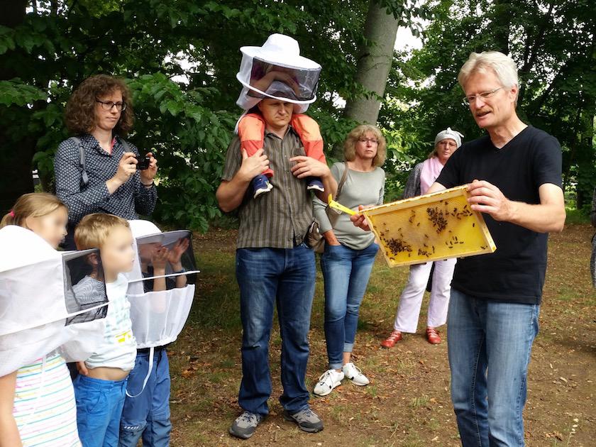 Reinhold zeigt eine Bienenwabe
