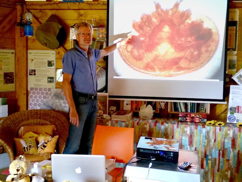 Vortrag Reinhold Burger zur Varroabehandlung