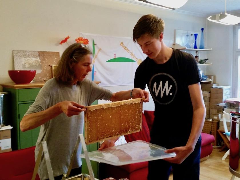 Transport der Honigwaben zur Schleuder