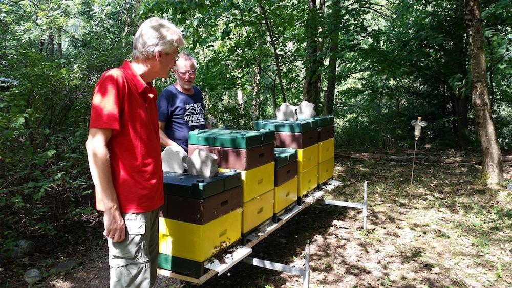 Sieghards Bienenvölker (Montafon, Vandans