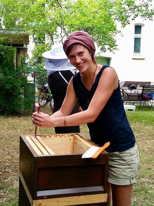 Gäste ernten Honig