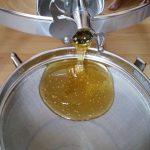 Honigfluss