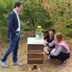 Bienenpatin MdB Lisa Badum und interessierter Gast, MdB Harald Ebner, bei der Kennzeichnung ihres Bienenpatenvolkes