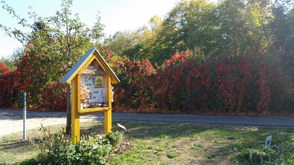 Herbst im Bamberger Bienengarten am Bienenweg 1