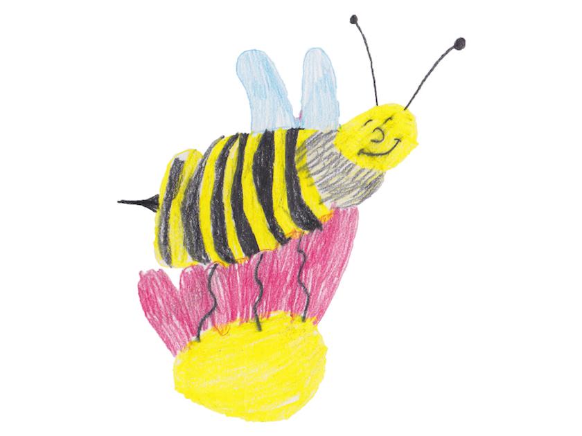 Kinderzeichnung Biene Lichteneicheschule 1b
