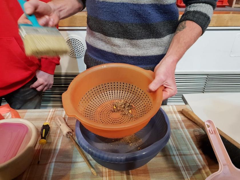 Vorgang zur Entnahme der Wildbienenkokons