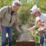 Teilnehmerin an Bienenbeute