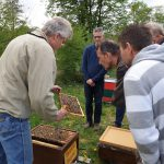 Reinhold zeigt Rähmchen mit Bienen