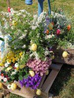 Bunter Blumenschmuck für den Pumpbrunnen
