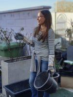 Kurs: Rosen-Schnitt, Düngung und Gesunderhaltung im Frühjahr / Rosenspezialistin Jeannette Frank von GALAROSA am 29.03.2019