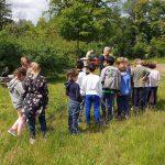 Gangolf-Grundschule Bamberg, Klasse 2a zum Schulbienenunterricht