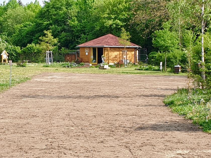 Eingesätes Blühwiesen-Areal an der Bienen-InfoWabe im Erba-Park
