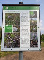 Schild am Blühwiesen-Areal an der Bienen-InfoWabe im Erba-Park