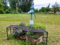 Pumpbrunnen im Bamberger Bienengarten