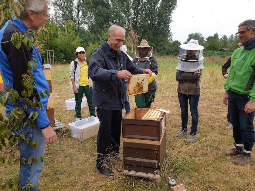 Bienenpate Rudolf Reinwald zur Honigernte am Bienenweg