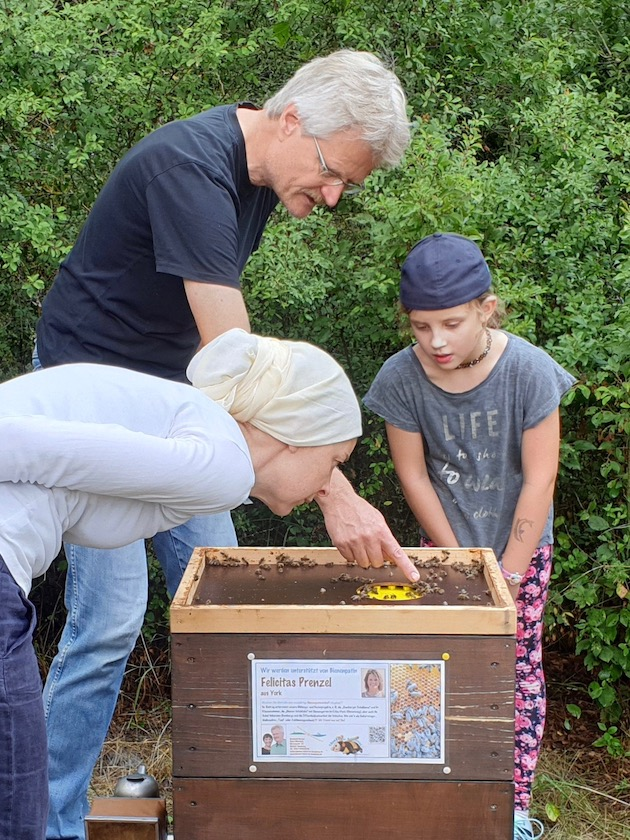 Reinhold erläutert Funktion Bienenflucht