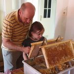Honigwaben entdeckeln