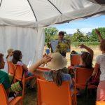 Ilona erklärt Pollensammlung anhand Fototafel