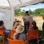 Ilona zeigt Fototafel mit Honigbiene