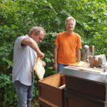 Werner zieht Honigwabe