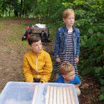 Kinder erwarten nächste Honigwabe für Box