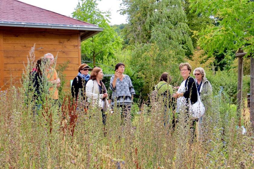 Heilkräuterfreunde an der Blühwiese im Bamberger Bienengarten