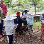 Sicherheitseinweisung als Vorbereitung zur Honigernte.