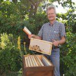 Erstes Wabenziehen in der Honigsaison 2019