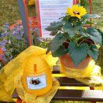 Impressionen von der Saison-Abschlussfeier der Bienen-InfoWabe