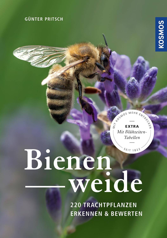 Cover Günter Pritsch, Bienenweide, Kosmos-Verl.
