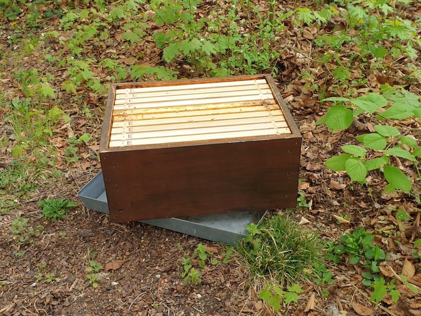 abgenommener Honigraum auf Blechdeckel
