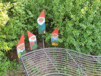 Gartenzwerge hinter einer Sitzbank