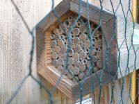 Gut gefüllte Wildbienennisthilfe