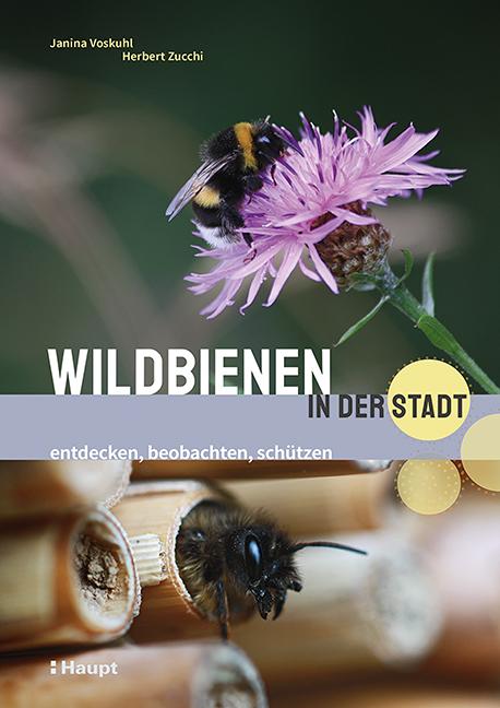 Cover Wildbienen in der Stadt, Haupt Verl.