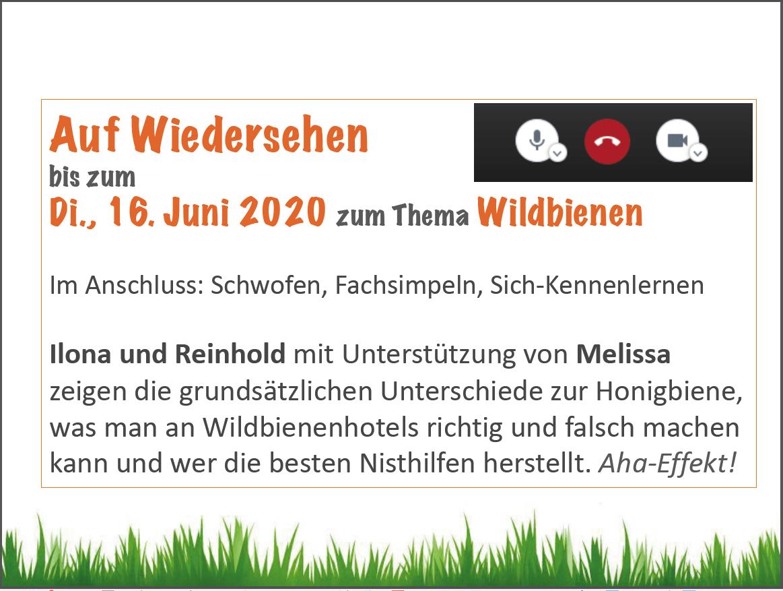 Folie Vortrag Bamberger Bienengarten, Ilona Munique