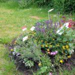 Schau-Grabanlage im Bamberger Bienengarten